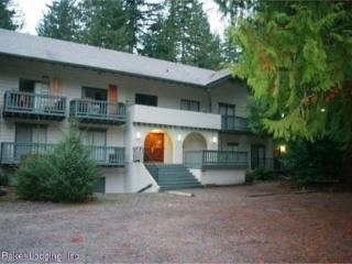 Snowline Lodge Condo #36- close to hiking and skiing at Mt. Baker! Now has WIFI!, Glacier