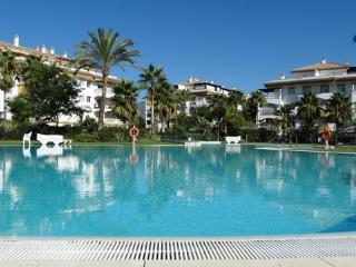 Private garden, BBQ and large pool in Puerto Banus