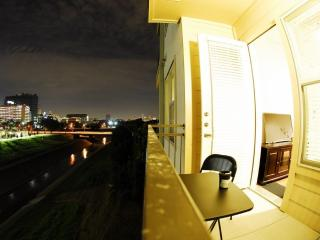 Medical center Pleasant apartment the Closest one, Houston