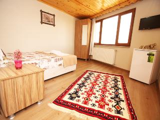 Sea view Flat İn İstanbul near Oldcity- Taksim, Istanbul