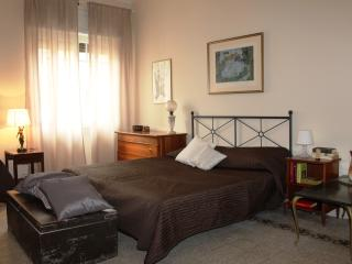 New! Beautiful, 5 minutes from Vatican Museum, Roma