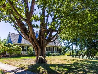 DOUGC - Historic, Arrowhead Farm, Wifi, Some A/C, West Tisbury