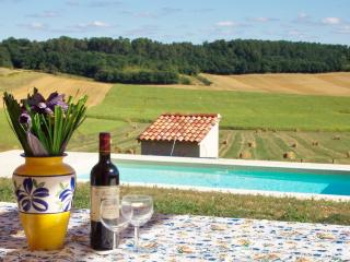 Les Lavandes - pool, air con and stunning views, Vanxains