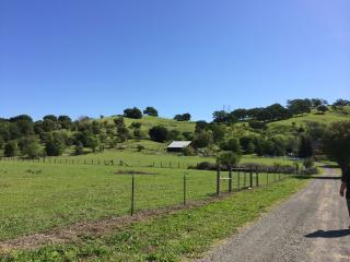 Pleasants Valley Orchard Houses,20 minutes to Napa, Vacaville