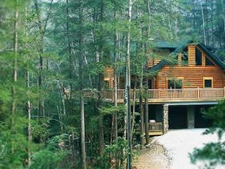 Independence Lodge ~ RA47309, Nantahala Township