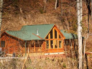 Call of the Wild ~ RA47282, Bryson City