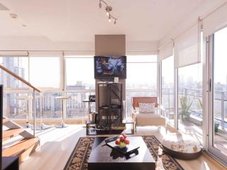 The Six Senses Penthouse in Palermo Soho, Buenos Aires