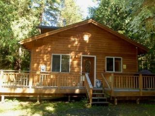 64MBR Pet Friendly Cabin near Skiing and Hiking at Mt. Baker, Glacier