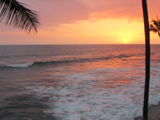OCEANFRONT-TURTLES,SUNSETS,SURFERS-BANYAN TREE 301, Kailua-Kona