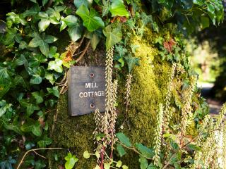 Mill Cottage on Colmer Country Estate, Modbury