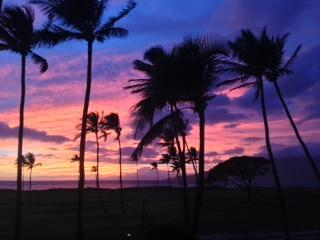 Stunning View, Oceanfront **ASK ABOUT SPECIALS**, Kihei