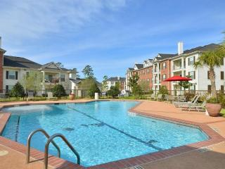 Pool View  2BDR/2Bath Apt/ Home in The Woodlands, Pollok