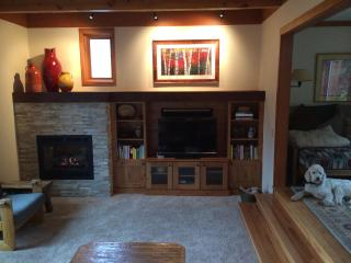 Living Room w/gas fireplace and sonos sound system
