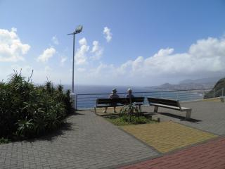 Blue Dream in Madeira Island - BBQ, Private Garden, Funchal