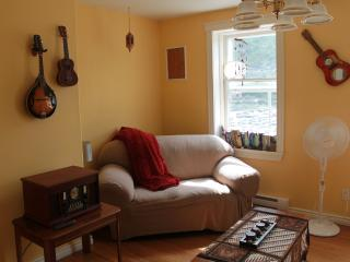 One Bedroom Apartment on Water St., St. John's