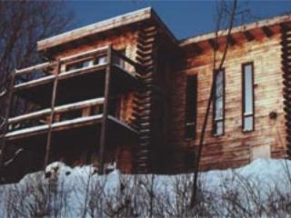 Vermont Log Home On 21 Acres Btwn Okemo/killington, Mount Holly