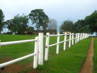 Self Catering Cottage on a 3 acre horse estate!, Waterfall