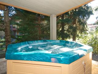 Glacier Reach - Private Hot Tub 54, Whistler