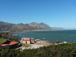 Come and watch the whales, Hermanus