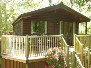 MISTLETOE LODGE with HOT TUB - Sunny & Secluded, Bowness-on-Windermere