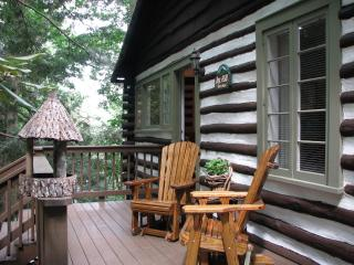 Asheville's Perfect Location-Smoky Mountain Easy