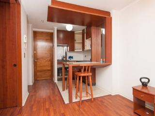 Gorgeous Apartment, Bellas Artes, Santiago