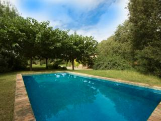 Cozy Villa Espinada with 4 bedrooms for 12 guests, tucked away in the Catalonian countryside, Espinavessa