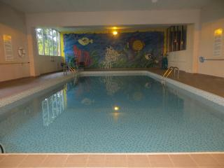 Classy, Furnished Condo With Indoor Pool for Rent, Kitchener