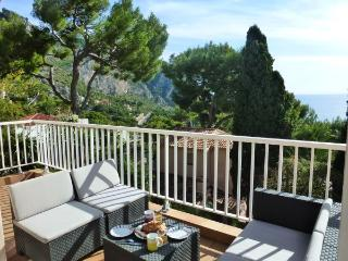 15 mn from Monaco sunny large terrace,views, pool, Eze