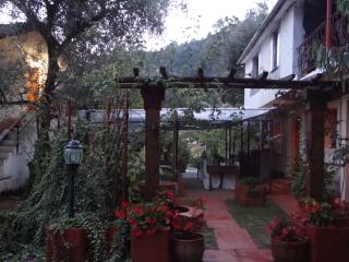 New Accommodation for Families & Groups, Dolceacqua