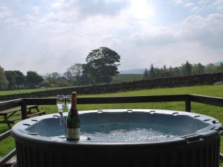 Artlegarth Country Lodges - Luxury Hot Tub Lodges, Ravenstonedale