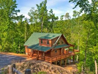 Blue Bear Cabin | 3 BR Asheville Area | Mountain Views | Gas Fireplace, Bat Cave