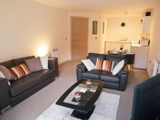 Luxury Apartment, St Pauls Square, Birmingham, Sheldon