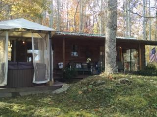 Dream Cabin, Waynesville