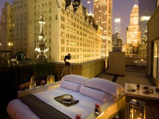 Finest Penthouse in Central Park New York City
