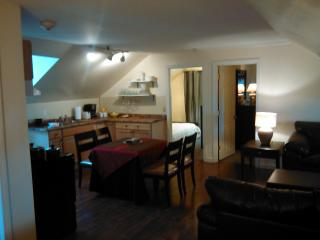 Apartment Rental for Large Party, Newport