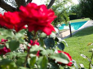 Charme & Relax in Tuscany close to Florence, Reggello