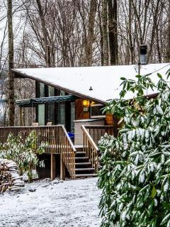 Sandy's Chalet in the Snow