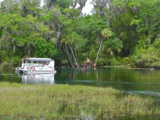 Rainbow River Home - Directly on Main Dive Springs, Dunnellon