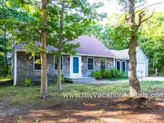 SKLAD - Contemporary Cottage, Screened Porch, Wifi, Room A/C in all 3 bedrooms, Edgartown