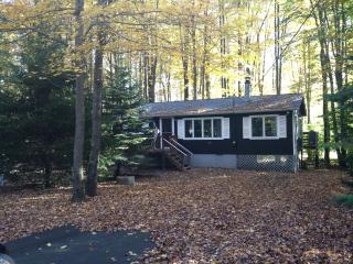Tranquil Cottage Near Skiing!  Fplc, Fpit, WiFi, Pocono Lake