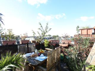 Luxury apartment with roof terrace, London