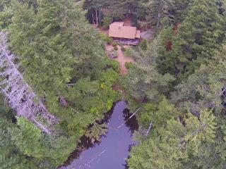 Log Cabin nestled in the woods-sleeps 6, Bandon