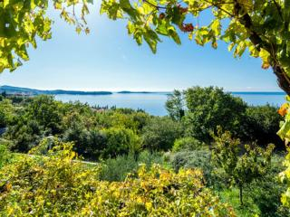 Apartments Matusko - Three Bedroom Apartment with Terrace and Sea View, Plat