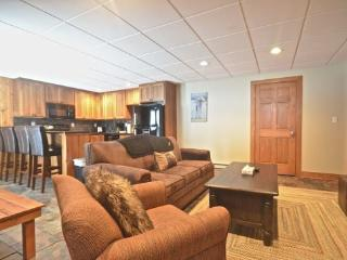 Luxurious 2BR Disciples Village Ski In/Ski Out Condo - Completely Remodeled, Sleeps 9, Boyne Falls