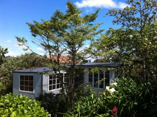 Mount Hobson Cabin in Remuera, Auckland Central