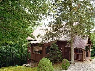 Secluded 2Bedroom Cabin,Pool Table, Hot Tub, Sevierville
