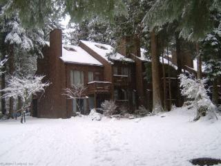 Snowater Condo #30 -This newly decorated 2 Story Condo - Sleeps 6 - Close to Community Amenities!, Glacier