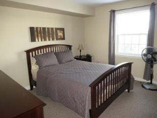 Close to All Amenities, Halifax