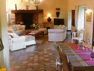 Private House with Pool in the Dordogne - Maison Plazac, Rouffignac